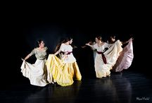 Language of Flamenco / Flamenco is a very popular and expressive form of dancing. The four basic emotions that are shared by men from all ages: happiness, anger, sadness and fear. It has become well known all over the world.