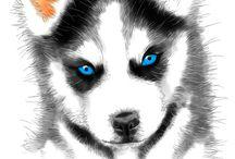 год собаки зима