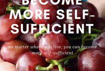 20_Homestead - Self Sufficient