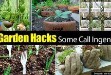 Gardening DIY tips