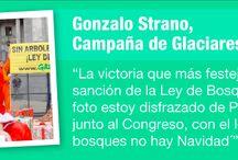 Trabajar en Greenpeace / ¿Cómo es trabajar en Greenpeace? ¡Conocenos! / by Greenpeace Argentina