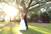 Charleston wedding videography / Charleston wedding videography