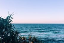 . paradise .