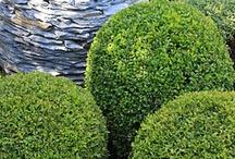 Dekoračné prvky v záhrade