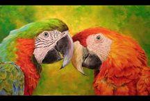 Obrazy papoušků