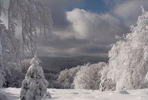 Bieszczady / Bieszczady uważane są powszechnie za najbardziej dzikie góry w Polsce. Choć nie porażają wysokością ani strzelającymi w niebo ścianami skalnymi to ich długie grzbiety ciągnące się dostojnie ponad dolinami potoków mają w sobie magiczne piękno.