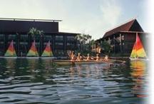 Disney's Polynesian Resort / Disney's Polynesian Resort at Walt Disney World in FL