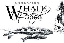Mendocino Coast Whale Festivals