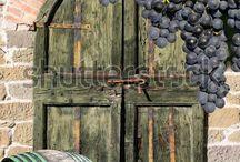 VIN og Champagne / Det jeg elsker ved vin er oppdagergleden. Det faktum at vin så tydelig påvirkes av hva menneskene gjør for å lage den..  Sir Andrew Lloyd Webber