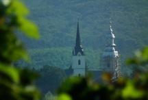 "my ""wine region""...Erdőbénye"
