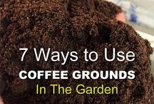 Garden compost - coffee bean uses