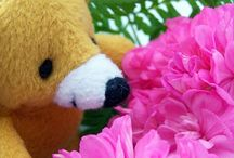 Innowacje florystyczne / Innowacje florystyczne www.florysta3d.pl