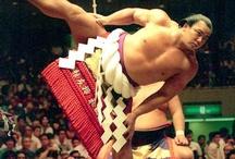 I Love Sumo