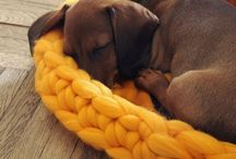 Doggies! / Canine crochet and crafts. Everything for your mutt!