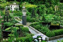 Köksträdgårdsprojekt