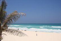 Cancún - Cozumel - Isla Mujeres (México) / Cancun, Cozumel, Isla Mujeres - Mexico
