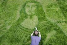 Lawn Art / At Custom Personalized Lawn Care, we know maintaining your lawn can be a work of art but these individuals put us to shame!
