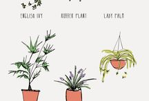 leaf me alone with my plants