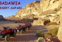 HURGHADA DAYTOURS / Experience real Egypt!        www.facebook.com/hurghadadaytour