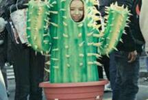 mias halloween costume