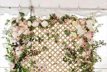 Wedding walls ideas
