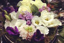 Fleurs / Compositions, bouquets