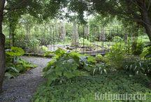 2) Rebar in garden
