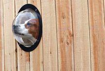 Dream Porch/Outdoor living spaces