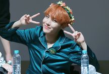 bts / Everything about bangtan~