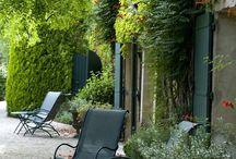 Kotcse garden