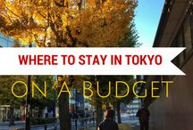 Where to stay in Tokyo on a budget / If you're looking for ideas of budget friendly places to sleep in Tokyo, check out my guide. I've talked about Airbnb as a great option, checking out a capsule hotel and also a very cool luxury hostel called Nui. Hope you find the article useful. / by BudgetTraveller