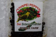 Sei pepper /  Very delicious on everything !
