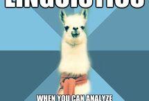 linguistic memes