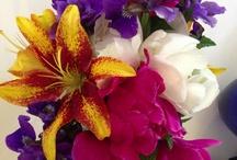 Flowers / by Lisa Davie