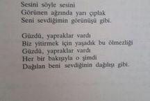 Şiir/Poet
