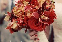 Cool Wedding  / by Jeslyn Harris