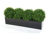 Artificial Window Boxes and Troughs / Our window boxes, filled with either artificial hedging or artificial boxwood balls are wonderful for brightening up the front of a building all year round.