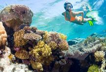 Water Sports / Surfing, Snorkeling, Sailing, Kayaking, Canoeing, Boat Rentals and more..