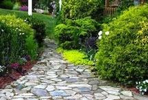 Gardening Envy