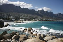 #VisitSouthAfrica / South Africa through the eyes of our travel bloggers.  / by Visit South Africa