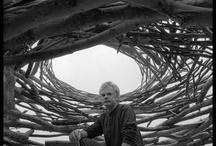 Andy Goldsworthy Art / Art