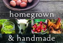gardening & farm life / by Ashley Baxa Haley