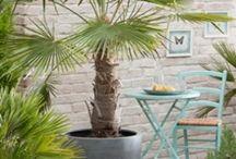 Garden - Inrichting