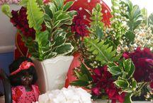 Love Kiwi Christmas! / Christmas in the antipodes