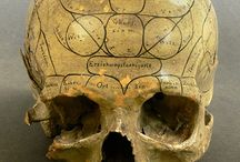 Mental Health Matters (Phrenology)