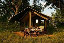 Luxury Camping for Oppi (I WIsh) :p