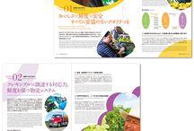 Ads(中面_Catalogs_Pamphlet_Leaflet )