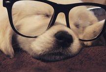 Cute!❤