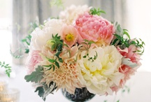 Wedding inspiration  / by Claire Goodwin