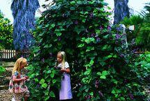 Trädgård för ungar